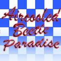 aircooled beetle paradise